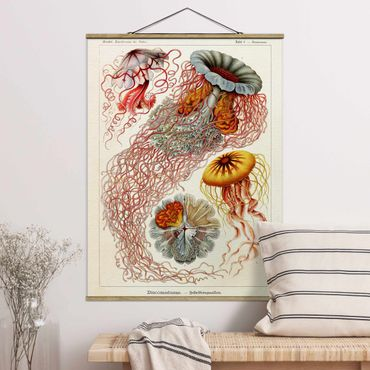 Foto su tessuto da parete con bastone - Vintage Consiglio Jellyfish - Verticale 4:3