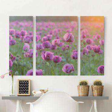 Stampa su tela 3 parti - Purple Poppy Flower Meadow In Spring - Trittico