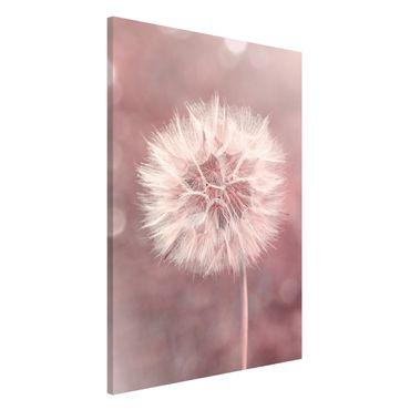 Lavagna magnetica - Dandelion rosa bokeh - Formato verticale 2:3
