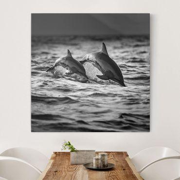 Stampa su tela - Due delfini che saltano - Quadrato 1:1