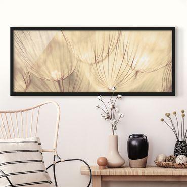 Poster con cornice - Dandelions Close-Up In Tonalità Seppia Familiare - Panorama formato orizzontale
