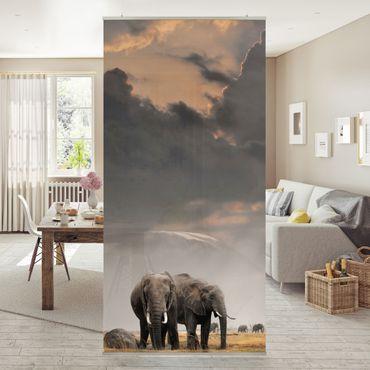 Tenda a pannello Elephants in the Savanna 250x120cm