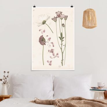 Poster - Herbarium In Pink II - Verticale 3:2