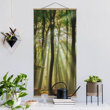 Foto su tessuto da parete con bastone - Giornata di sole nel Bosco - Verticale 2:1