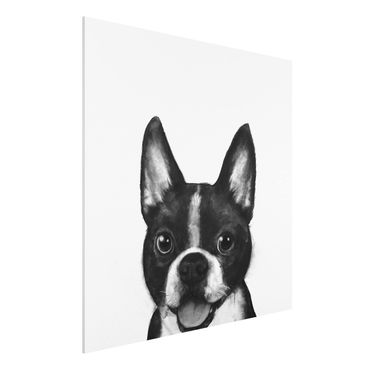 Stampa su Forex - Illustrazione Dog Boston Monochrome Pittura - Quadrato 1:1