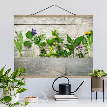 Foto su tessuto da parete con bastone - Erbe Medicinali e selvaggio - Orizzontale 3:4