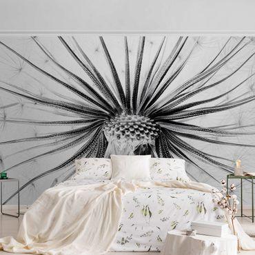 Carta da parati metallizzata - Dandelion Close Up in bianco e nero