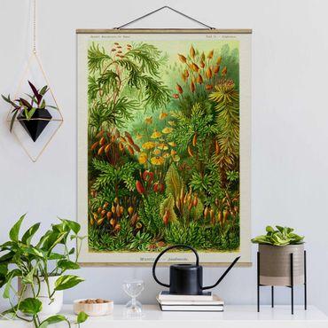 Foto su tessuto da parete con bastone - Vintage Consiglio Moss - Verticale 4:3