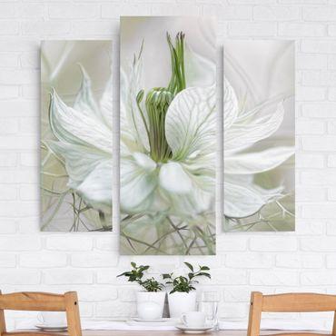 Stampa su tela 3 parti - White Nigella - Trittico da galleria