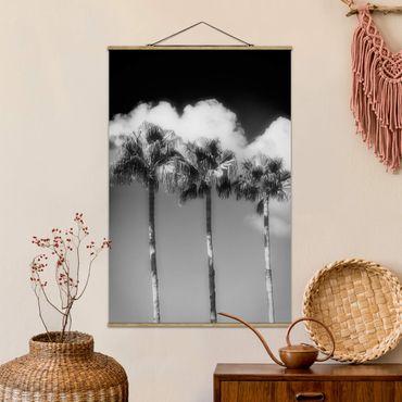 Foto su tessuto da parete con bastone - Palme contro il cielo nero e nero - Verticale 3:2
