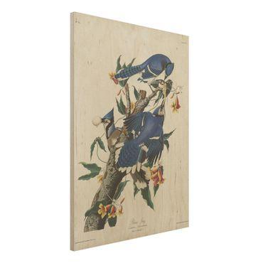 Stampa su legno - Consiglio Blue Jays d'epoca - Verticale 4:3