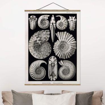 Foto su tessuto da parete con bastone - Fossili bordo Vintage Bianco e nero - Verticale 4:3