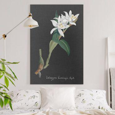 Stampa su tela - White Orchid su lino II - Verticale 3:2