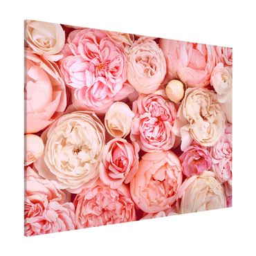 Lavagna magnetica - Rose Rose Coral Shabby - Formato orizzontale 3:4