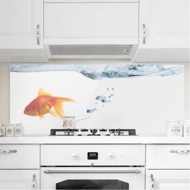 Paraschizzi in vetro - Goldfish
