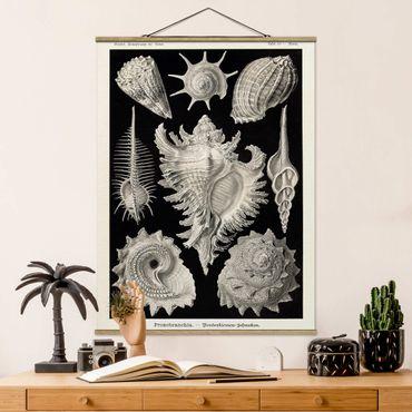 Foto su tessuto da parete con bastone - Vintage Consiglio Cozze I - Verticale 4:3