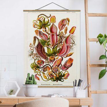 Foto su tessuto da parete con bastone - Consiglio Vintage Piante Illustrazione Rosso Verde - Verticale 4:3