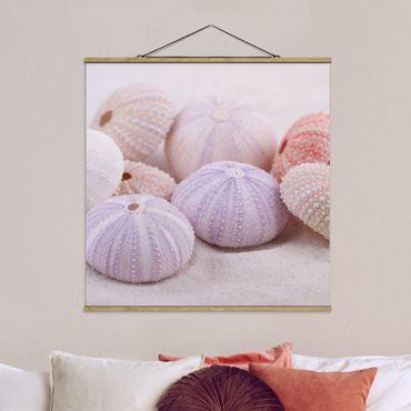 Foto su tessuto da parete con bastone - Urchin In Pastel - Quadrato 1:1