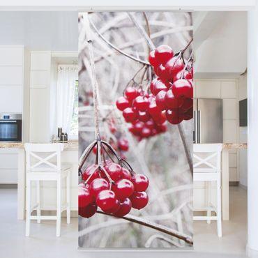 Tenda a pannello No.CA42 Forest Fruits 250x120cm