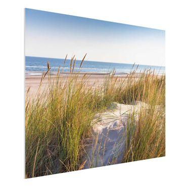 Stampa su Forex - Beach Dune Al Mare - Orizzontale 3:4