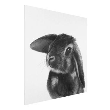 Stampa su Forex - Illustrazione Coniglio bianco e nero Disegno - Quadrato 1:1