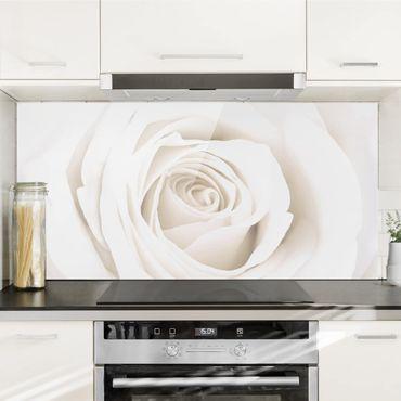 Paraschizzi in vetro - Pretty White Rose - Orizzontale 1:2
