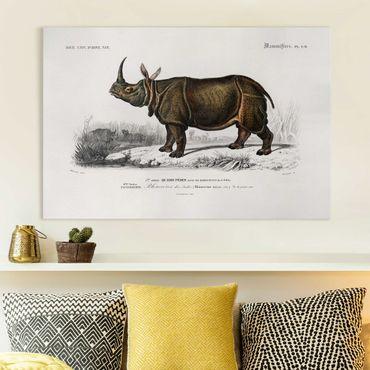 Stampa su tela - Vintage Consiglio Rhino - Orizzontale 2:3