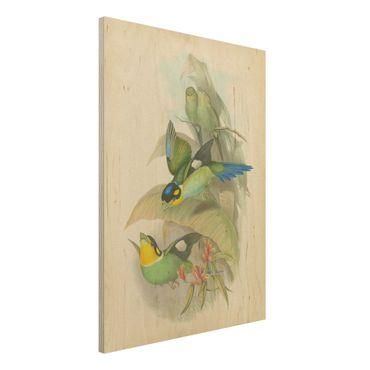 Stampa su legno - Illustrazione Vintage Uccelli tropicali - Verticale 4:3