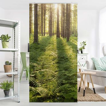 Tenda a pannello - Sunrays in a green forest 250x120cm