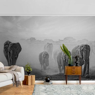 Carta da parati metallizzata - Terra degli elefanti