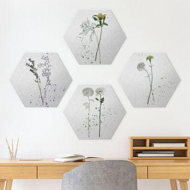 Esagono in Alluminio Dibond - Botanico Acquerello Set I