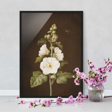 Poster con cornice - Barbara Regina Dietzsch - Hollyhock - Verticale 4:3