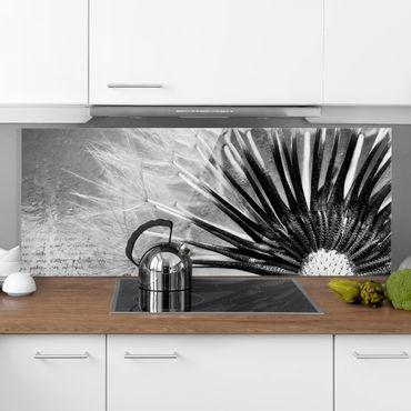 Paraschizzi in vetro - Dandelion Black & White - Panoramico