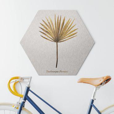 Esagono in Alu-dibond - Gold - Palm Leaf II