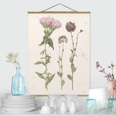 Foto su tessuto da parete con bastone - Herbarium In Pink III - Verticale 4:3