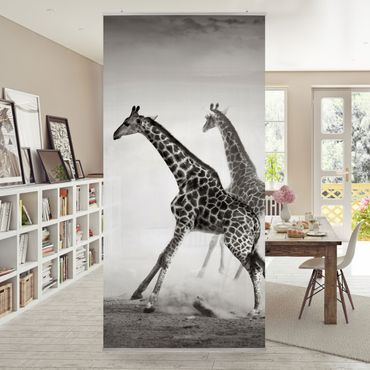 Tenda a pannello Giraffe Hunting 250x120cm