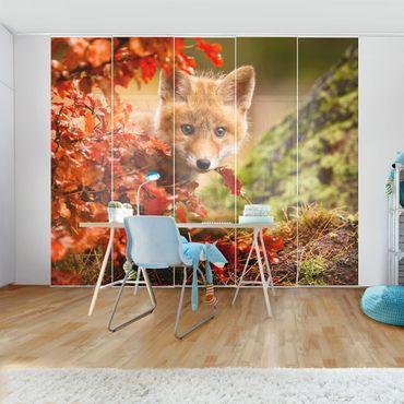 Tende scorrevoli set - Fox In Autumn