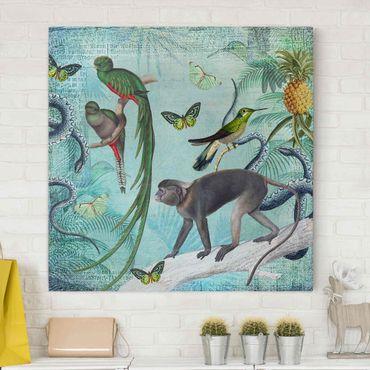 Stampa su tela - Coloniale Collage - Scimmie e uccelli del paradiso - Quadrato 1:1