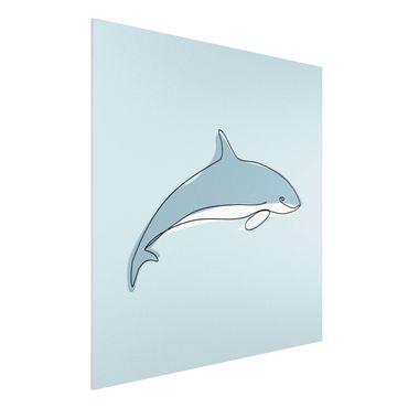Stampa su Forex - Dolphin Line Art - Quadrato 1:1