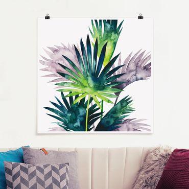 Poster - Exotic Foliage - Palma - Quadrato 1:1