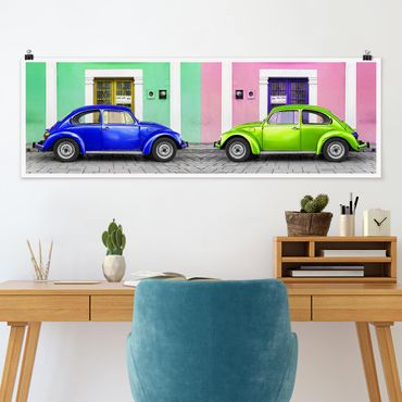 Poster - Colored Beetles - Panorama formato orizzontale