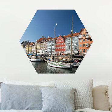 Esagono in forex - Porto di Copenhagen