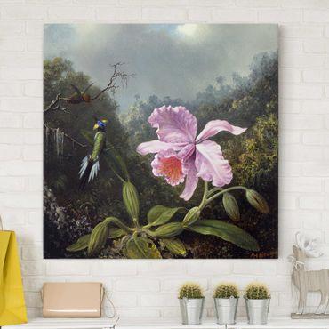 Stampa su tela - Martin Johnson Heade - Natura morta con orchidee e due colibrì - Quadrato 1:1