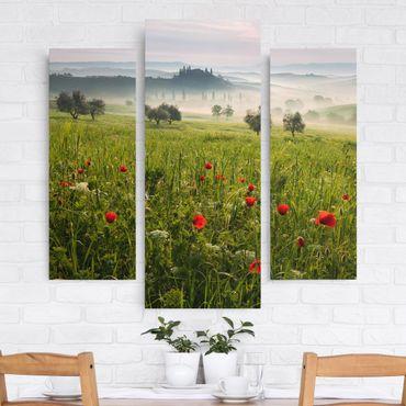 Stampa su tela 3 parti - Tuscany Spring - Trittico da galleria