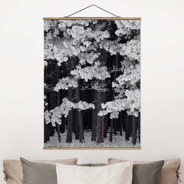 Foto su tessuto da parete con bastone - Foresta Con brina in Austria - Verticale 4:3