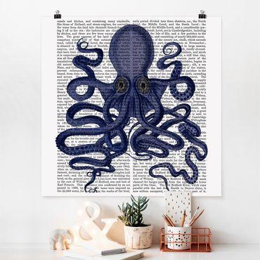 Poster - Animal Reading - Octopus - Quadrato 1:1