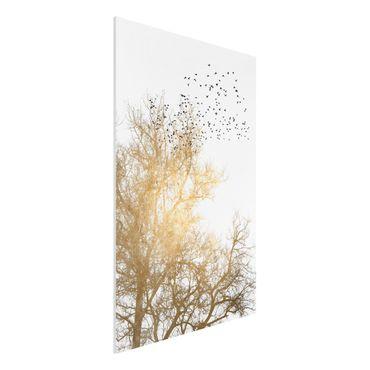 Stampa su Forex - Stormo di uccelli davanti ad un albero dorato - Verticale 3:2