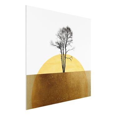 Stampa su Forex - Sole dorato con albero - Quadrato 1:1