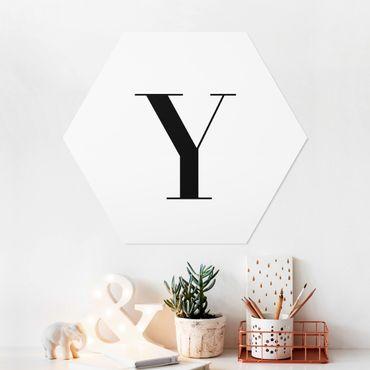 Esagono in forex - Lettera Serif Bianco Y
