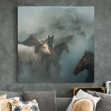 Stampa su tela - Wild Horses - Quadrato 1:1